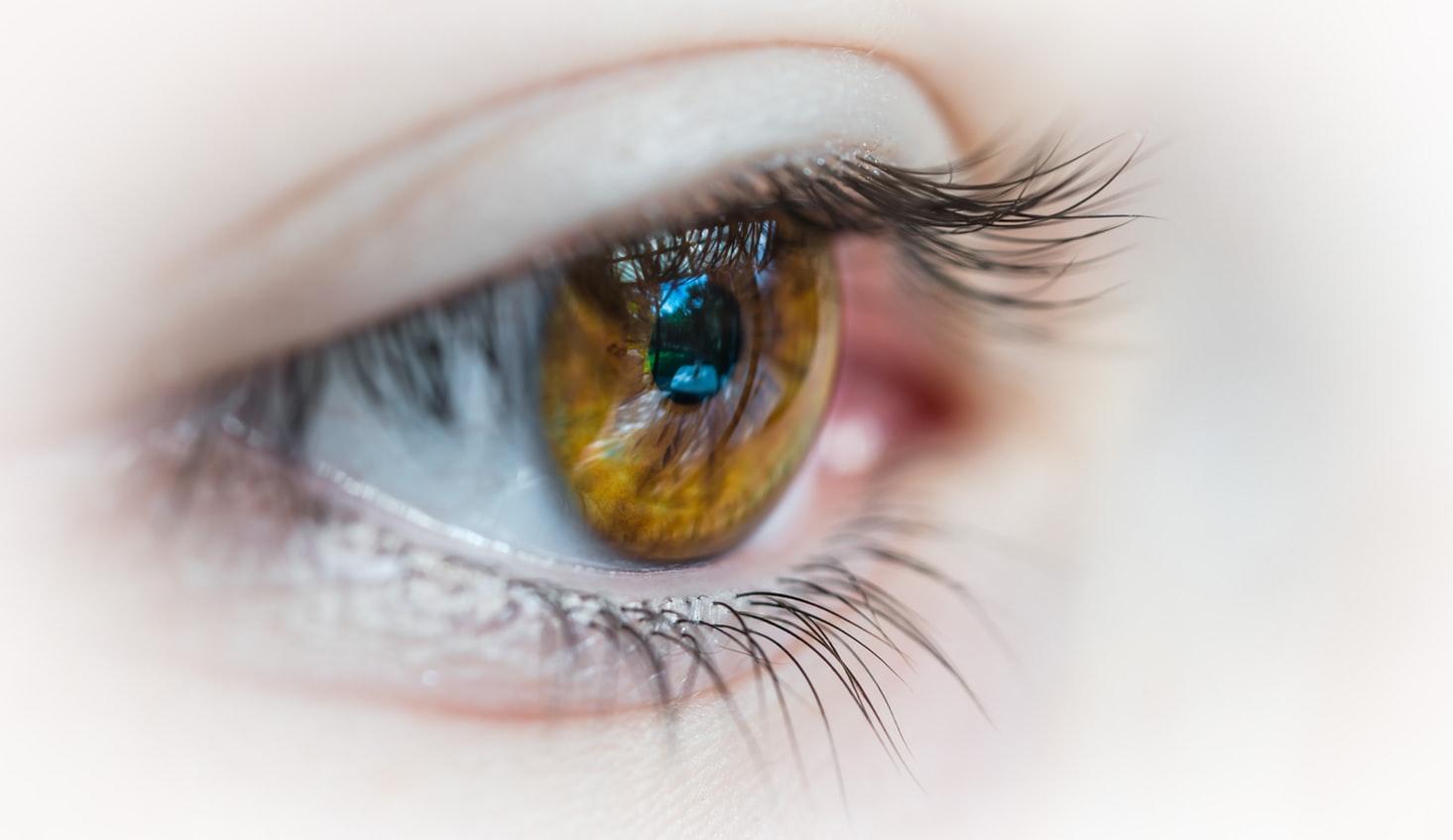 弱视训练仪多少钱一台 | 弱视仪器多少钱一台 | 治疗弱视仪器多少钱 | 弱视治疗仪价格表